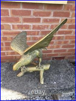Rare Vintage Solid Brass Eagle Very Large and Heavy Figure 24 Wingspan- 5kg