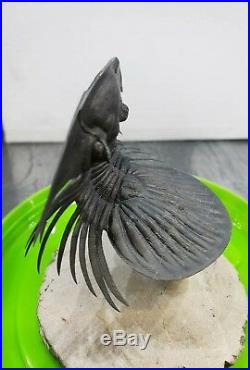 VERY RARE Flying Large Scabriscutellum Trilobite Free Standing Museum Fossil